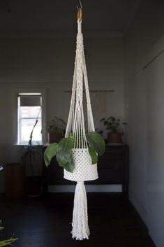 Macrame Hanging Basket ~ Indoor Pot Plant Holder ~ Boho Decor ~ Cotton Hanging Planter ~ Plant Decor ~ Hanger Length ( 46 inches ) - All For Herbs And Plants Macrame Hanging Planter, Macrame Wall Hanging Patterns, Macrame Plant Holder, Macrame Plant Hangers, Hanging Planters, Plant Holders, Indoor Hanging Baskets, Indoor Plant Wall, Indoor Plants