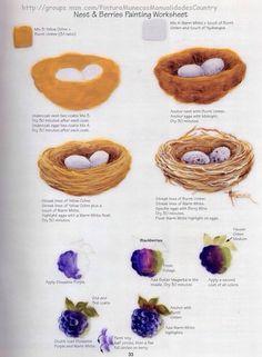 Ovos e ninho