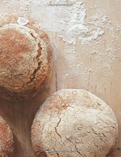 Le Pain Quotidien Cookbook: Handmade Recipes for Breads, Tartines, Soups, Muffins and More from the Famous Artisan Boulangerie Cookery: Amaz...