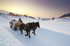 horse drawn sled images | Horse-drawn sleigh rides - Schmiedbauernhof in Faistenau (© Fuschlsee ...