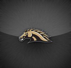 Western Michigan University Broncos - background logo