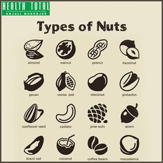 Find Nuts Icon Set stock images in HD and millions of other royalty-free stock photos, illustrations and vectors in the Shutterstock collection. Thousands of new, high-quality pictures added every day. Dog Vector, Vector Icons, Icon Set, Fruit Quotes, Fruit Illustration, Photo Libre, Coffee Logo, Chestnut Horse, Icon Collection