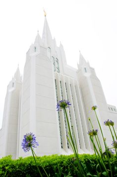 Free pictures of the San Diego, California LDS Temple