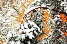 Lunta tulvillaan on raitis talvisää.