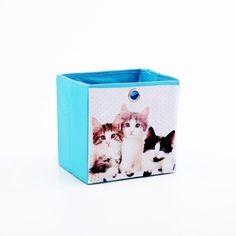 Caja con gatitos