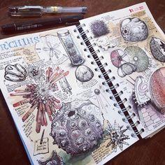 Kunstjournal Inspiration, Sketchbook Inspiration, Sketchbook Ideas, A-level Kunst, Artist Research Page, Gcse Art Sketchbook, A Level Textiles Sketchbook, A Level Art Sketchbook Layout, Travel Sketchbook