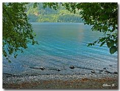 Lake Crescent, Olympic National Park (Fall+colors holidays trees water waves ). Photo by Ann75
