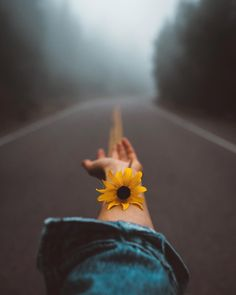 35 ideas for aesthetic photography inspiration nature Hipster Photography, Portrait Photography Poses, Tumblr Photography, Creative Photography, Amazing Photography, Landscape Photography, Nature Photography, Photography Ideas, Travel Photography