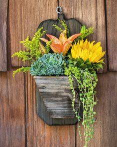 Reclaimed wood succulent plants and flowers arranged 💖 Fall Planters, Wood Planters, Hanging Planters, Succulents In Containers, Planting Succulents, Succulent Plants, Cacti, Pumpkin Planter, Dish Garden