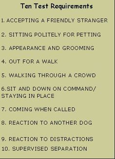 Tips for dog training for obedience - Talk with the vet about which foods you ou. - Dog Health and Training - Dogs Therapy Dog Training, Service Dog Training, Puppy Obedience Training, Training Your Puppy, Therapy Dogs, Service Dogs, Dog Training Tips, Brain Training, Psychiatric Service Dog