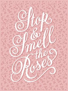 Smell the Roses from 55 Hi's