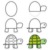 Cómo dibujar una tortuga