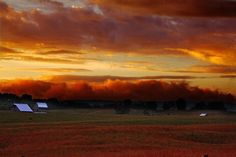 A rural country farm on a steamy summer evening. across the field you can see old fashioned country barns and some cattle in the field grazing before the night sets in. Above the clouds reflect rich red, yellow and orange hues from the summer sun.