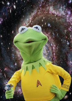 Holy crap Kermit Kirk! Phasers to PUN!