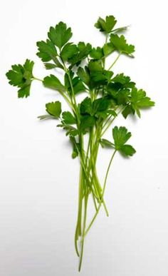 Boost vitamins, minerals, and antioxidants with a snip of healthy herbs.