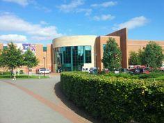 University of Limerick  Partner of Business Management