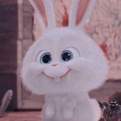 Cute Bunny Cartoon, Cute Cartoon Pictures, Cartoon Pics, Cute Cartoon Wallpapers, Girl Cartoon, Rabbit Wallpaper, Bear Wallpaper, Cute Disney Wallpaper, Cute Wallpaper Backgrounds