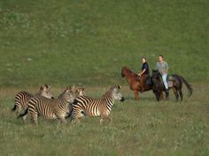 Luxury Safaris | Private Safari | Family Safari – Itineraries - Ride the Rift Malawi