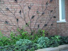 Awesome trellis walls gardens