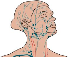 "Click on blue ""How to drain..."" Quick video from Dr. Mark Lynch of New Jersey on how to do self massage to reduce sinus congestion and get rid of a cold when used at first symptoms."