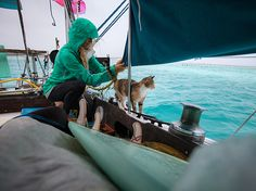 Liz Clark and her trusty sidekick, Amelia, trying to collect water on a rainy morning in French Polynesia; Photograph by Jody MacDonald