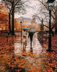 I'm so glad I live in a world where there are Octobers. - L.M. Montgomery