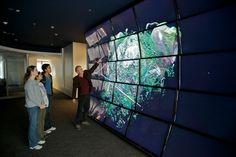 interactive wall display - Google Search