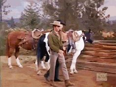 """Duck! Bessie Sue is too much woman for Adam and Little Joe (Bonanza; """"Any Friend of Walter's"""", S04E26, 1963)"""