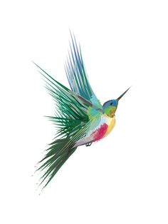 http://www.minted.com/product/wall-art-prints/MIN-GKC-KNA/hummingbird?ccId=469576