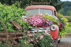 Another vehicle flower bed garden object