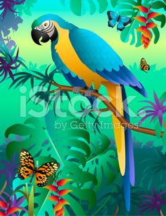 blue and gold macaw in the Amazon rainforest royalty-free stock vector art