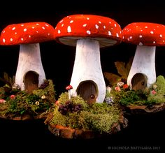 Toadstool Cottages - MISCELLANEOUS TOPICS