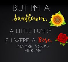 "Sierra Burgess Is A Loser Shannon Purser Sunflower Lyrics quote ""But I'm a sunflower 🌻, a little funny, if I were a rose 🥀 maybe you'd pick me."" Created By: Emily Frazier🌼🌻 God bless! Love Quotes For Boyfriend, Cute Love Quotes, Funny Love, Loser Quotes, Love Yourself Song, Sarcastic Ecards, Sunflower Quotes, Funny Tumblr Stories, Funny Quotes For Instagram"