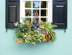 windowbox container gardens pinterest bepflanzung. Black Bedroom Furniture Sets. Home Design Ideas