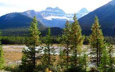 Jasper Banff Park Ice-Highway Banff, Jasper, Ice, Mountains, Park, Nature, Travel, Voyage, Parks