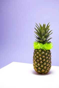 Catherine_losing_photography_scrunchie__katie_fotis_still_life_fashion_pineapple