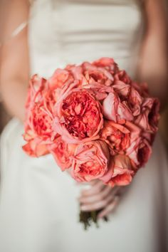 Looking for a Bahamas wedding planner? Chic Bahamas Weddings with its experience in planning Luxury Bahamas weddings will help you! Wedding Events, Our Wedding, Dream Wedding, Wedding Bells, Weddings, Floral Wedding, Wedding Colors, Wedding Flowers, Bride Bouquets