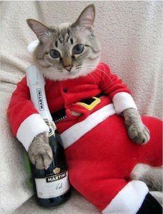 Photo De Noel Drole Les 10+ meilleures images de Noël drôle | noel, drôle, snoopy noël