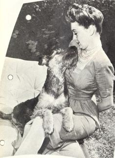 Olivia De Havilland w/ Shadrack the Airedale c. 1943
