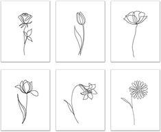 Minimalist Flowers Prints - Set of 6 Inches) Glossy Floral Botanical Continuous Contour Line Wall Art Decor - Rose - Tulip - Poppy - Lily - Chamomile Rose Line Art, Line Art Flowers, Line Flower, Flower Art, Line Art Tattoos, Tatoos, Illustration Blume, Abstract Line Art, Arte Floral