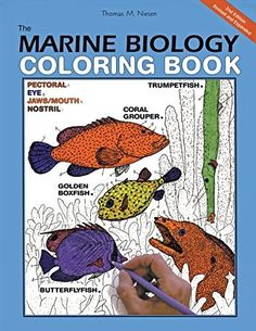 The Zoology Coloring Book | Pinterest | Zoology, Coloring books and ...