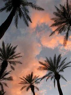 Palm Desert Sunset, Resort