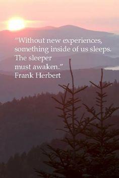 Awaken the gentle giant in your soul...