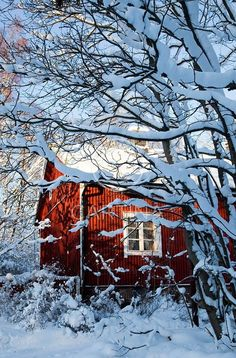 COUNTRY CHARM <3 Red barn in snow.