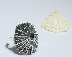Silver shell, sapphire in golden setting ladies ring. Casted shell, sapphire in 14 carat golden setting ring.