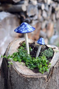 These mushrooms will be a favorite gift for anyone!