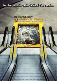 Creative advertising: National Geographic Knows How To Draw Your Attention.