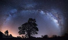 Milky over Casandra pine  Camera: NIKON D610 Lens: 14.0 mm f/2.8 Focal Length: 14mm Shutter Speed: 20sec Aperture: f/2.8 ISO/Film: 6400  Image credit: http://ift.tt/2byyXqX Visit http://ift.tt/1qPHad3 and read how to see the #MilkyWay  #Galaxy #Stars #Nightscape #Astrophotography