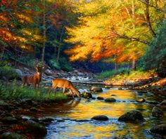 """""""Quiet Encounter"""" by Thomas Kinkade Thomas Kinkade Art, Kinkade Paintings, Deer Paintings, Animal Paintings, Thomas Kincaid, Art Thomas, Wildlife Art, Beautiful Paintings, Painting Inspiration"""