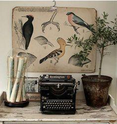mesa con máquina escribir antigua, mapas, lámina y planta